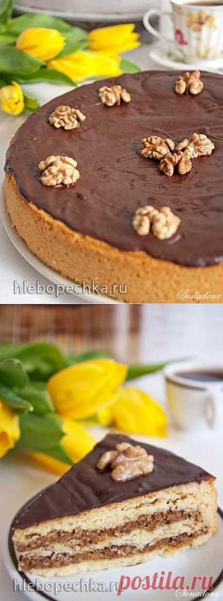 Пирог песочный с грецкими орехами.