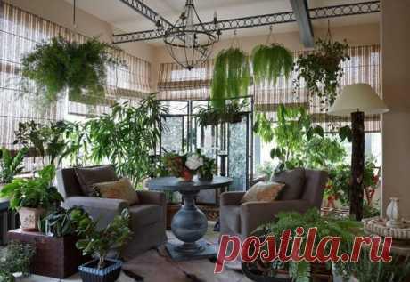 Как оригинально и стильно украсить Ваш дом комнатными растениями, сделав интерьер комнат незабываемым. 6 дизайнерских идей | Décor and Design | Яндекс Дзен
