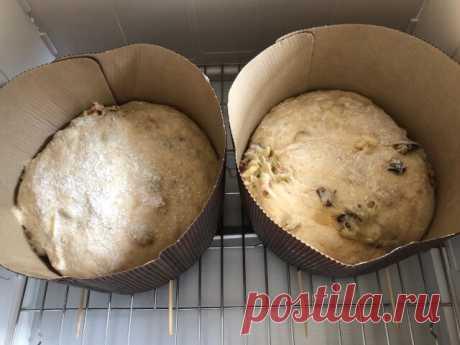 Видели, сколько стоит итальянский кекс «Панеттоне»? Вот как сделать его самой