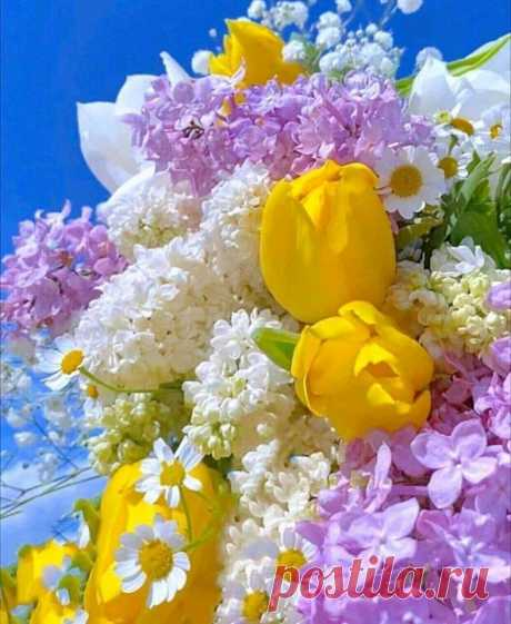 Когда у нас красиво в сердце - Цветами всё цветёт вокруг! ...🌹  Душа должна пахнуть как цветы.душа должна пахнуть счастьем.....Берегите себя:..Не переживайте по пустякам...Купайтесь в Счастливых Моментах!...И пусть у нас, у всех, всё будет Хорошо!... Быть счастливым - очень полезно для здоровья и для здоровья всех , кто вас окружает...Пусть каждый день несет с собой...доровье, Счастье и Покой... Будьте счастливы!❤🙏