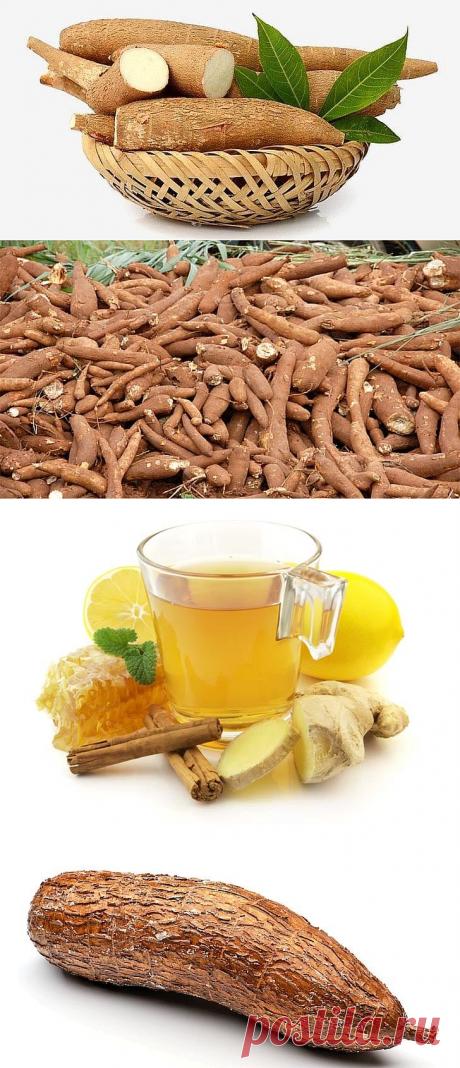 Маниока — 26 полезных свойств, применение и противопоказания