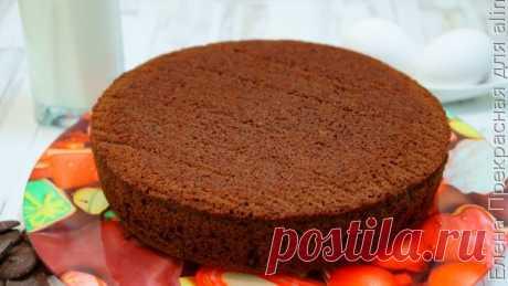 👌 Воздушный бисквит для торта на кефире, рецепты с фото Довольно простой рецепт приготовления пористого и пышного бисквита, который можно использовать как основу для торта!  Ингредиенты на приготовление бисквитного теста: Мука 200 гр....