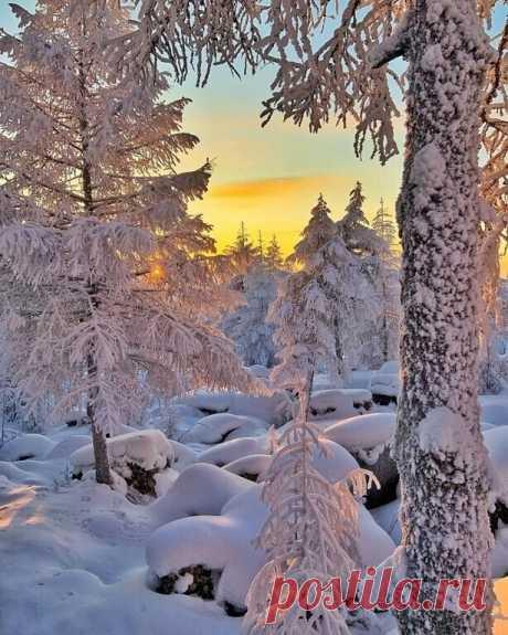 Нет лучше Сказки на Земле,  Чем создаёт сама Природа!..