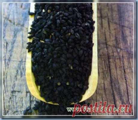 Черный тмин (калинджи) - применение и полезные свойства   Сайт о саде, даче и комнатных растениях.