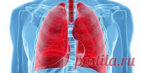 2 дыхательных упражнения для детоксикации легких - Страница 2 из 2 Ваша диафрагма выпускает весь воздух из вашихлегких. Вдыхайте через рот, как если бы это была реакция удивления. Затем выдохните через рот пару раз, делая ха-ха-ха, пока не почувствуете, что воздуха нет в легкихЭто заставит вас почувствовать, как будто вы прижали живот к позвоночнику. Вдыхайте свежий воздух через нос в пустые легкие. Полностью наполните свои легкие …
