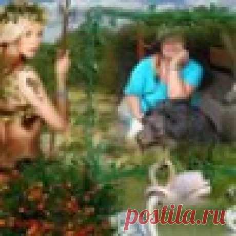 rozalina_mag@mail.ru