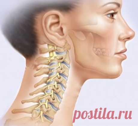 Омоложение лица и шеи: Упражнения, которые оказывают мощное воздействие на внешность Несколько секретов, которые помогут вам оказать направленное, сильное воздействие на внешность.
