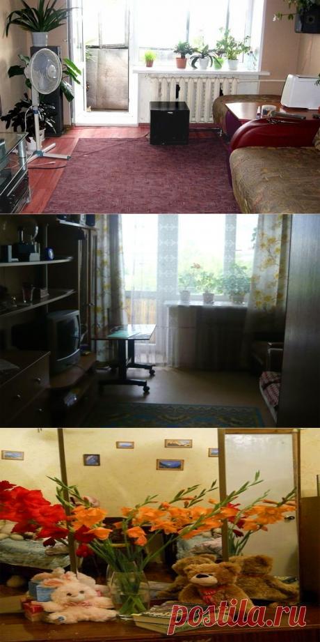 Кот спрятался в квартире. Кто поможет его найти? | Головоломыч | Яндекс Дзен