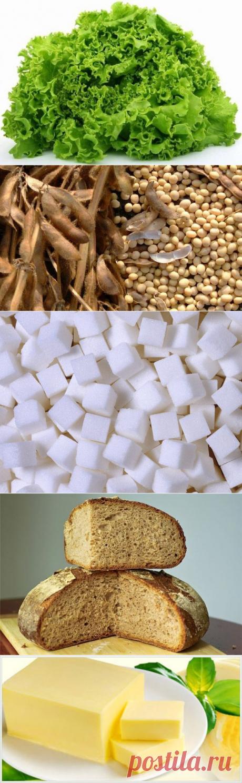 Самые распространённые мифы о еде