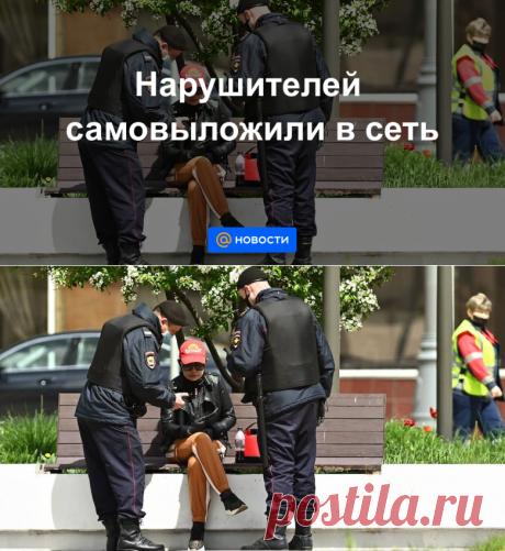 Нарушителей самовыложили в сеть - Новости Mail.ru