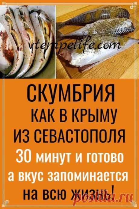 Скумбрия «Kак в Kрыму» из Севастополя! 30 минут и готово, а вкус запоминается на всю жизнь! | В ТЕМПЕ ЖИЗНИ
