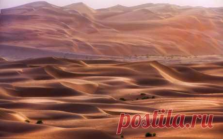 Dubai's deserts