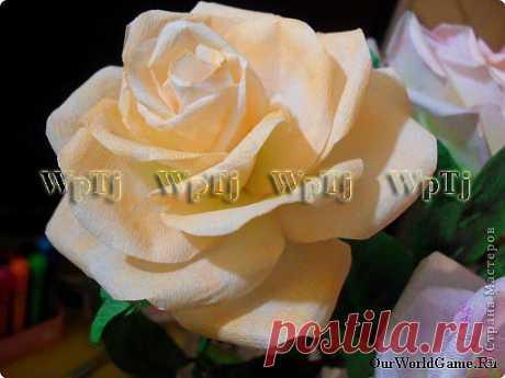 Мастер класс роза из бумаги | Страна Мастеров