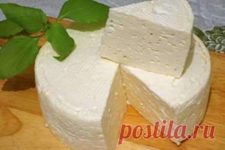 Домашний французский сыр: вкусно, просто и дешево… – БУДЬ В ТЕМЕ