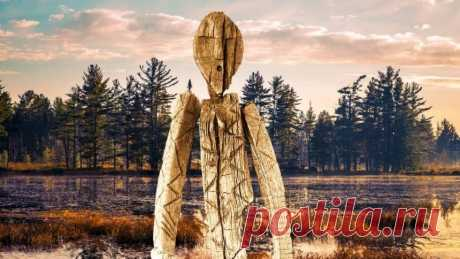 Шигирский идол: уральская загадка или самая древня деревянная скульптура на Земле | История