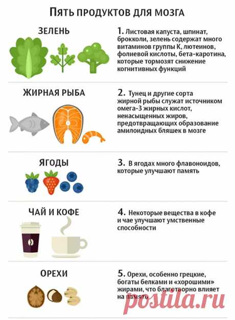 Ешь и умней. Какая пища нравится мозгу и от какой он страдает - РИА Новости, 12.01.2020