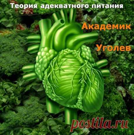 Теория адекватного питания. А.М. Уголев