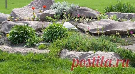 Как сделать каменный садик - Леди Флора Каменистый сад, он же рокарий – сооружение, которое вполне легко сделать своими руками. Сад из камен