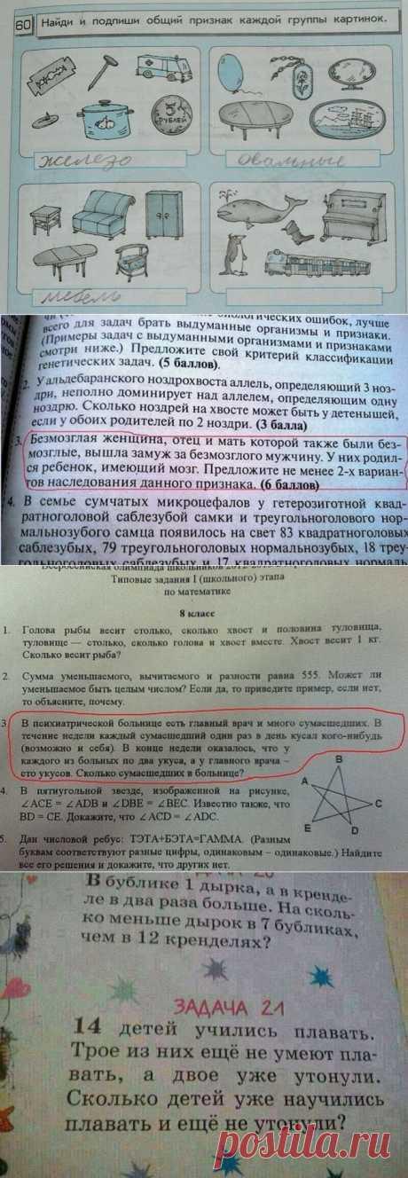 Что есть в учебниках   Prikolisti.com