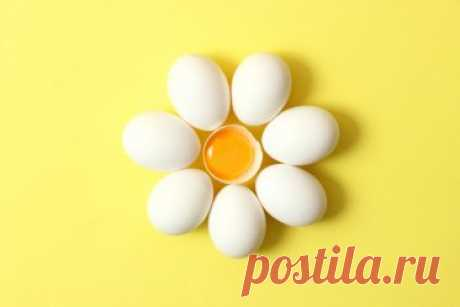 Почему яйца нужно есть каждый день