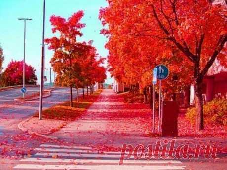 Осень в Швеции