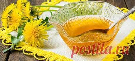 Варенье из одуванчиков - рецепты с лимоном, апельсином, медом, без сахара и без варки. Как варить и чем полезно одуванчиковое варенье?