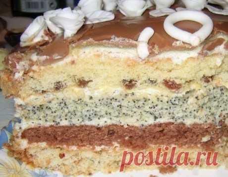 Торт проще простого  Коржей всего четыре: с изюмом, какао, маком, орехами  Ингредиенты: Показать полностью…