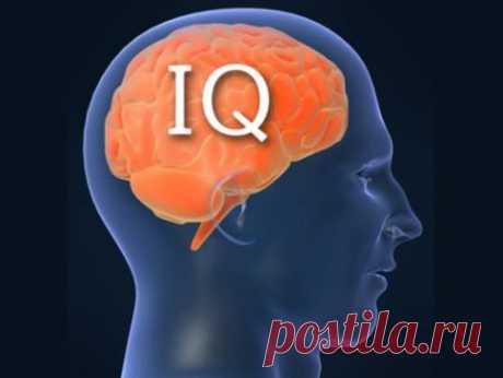 Тест. Проверьте свой IQ