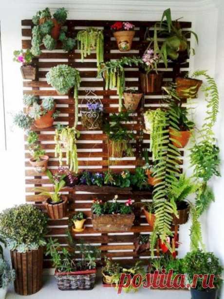 Идеи оформления полок для цветов