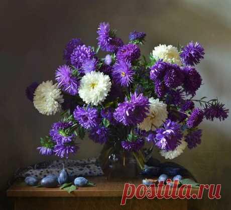 Астры в 2019г. Cute painting Натюрморт, Снимки натюрмортов и Осенние цветы в Яндекс.Коллекциях
