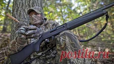 В Комитете разъяснили, как следует заезжать в угодья накануне открытия охоты   Охотник выходного дня   Пульс Mail.ru Иначе можно получить штраф и лишиться оружия, а также права охоты...