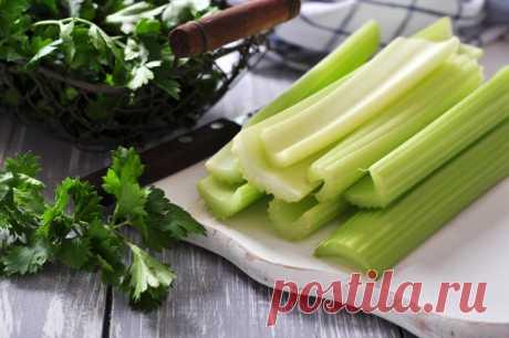 Настоящий овощ здоровья! Все про сельдерей — Диеты со всего света