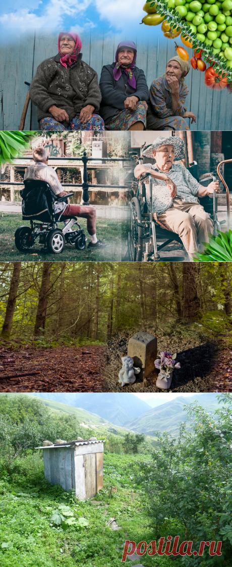 🍒5 причин, почему дожить до 110 лет не так хорошо, как кажется | Живые будни 🍒 | Яндекс Дзен