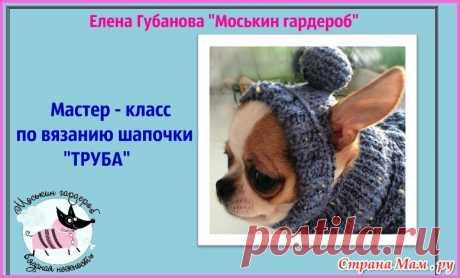 """Мастер-класс по вязанию шапочки собаке """"Труба"""" - Гардероб для наших любимых питомцев (собак, кошек) - Страна Мам"""