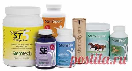 Полная линейка продукции Stemtech для поддержки системы обновления организма https://stw99.stemtechbiz.com/