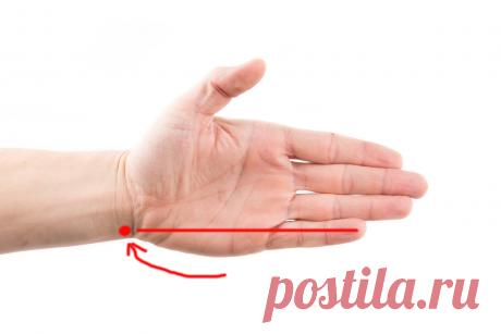 Точка на руке, которая избавит вас от бессонницы | Эксперимент | Яндекс Дзен
