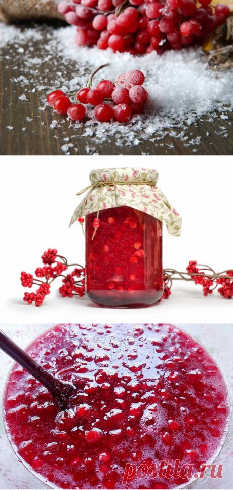 Правильная заготовка калины красной на зиму — Полезные советы
