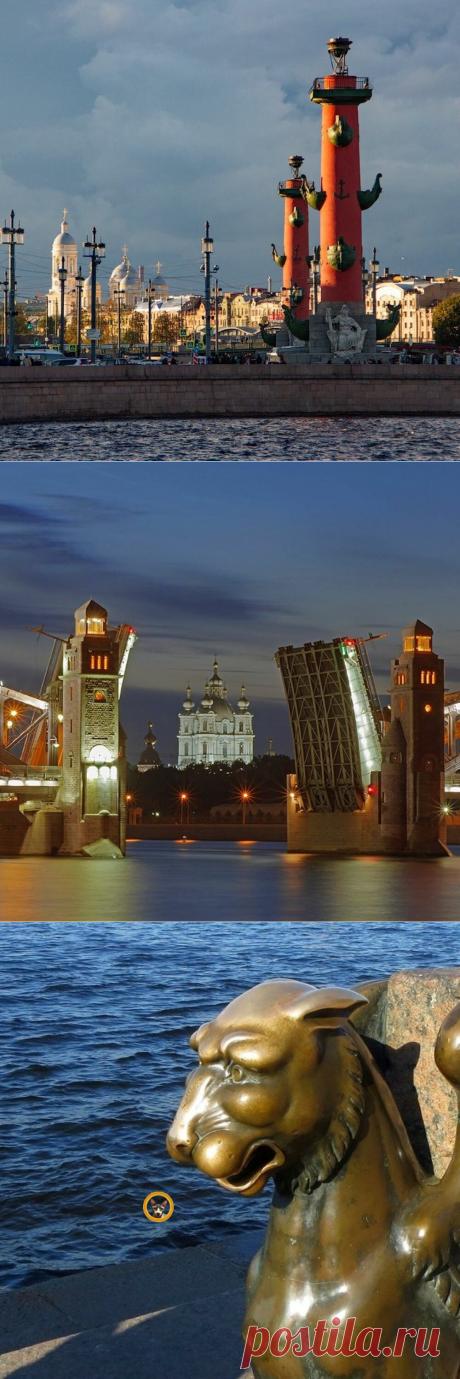Загадать желание и попробовать ленинградские пышки: 10 мест в Санкт Петерге, которые нужно обязательно посетить | Истории людей, вещей и мест | Яндекс Дзен