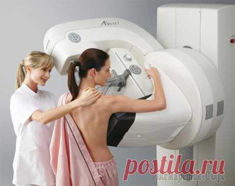 11 modos de bajar la morbilidad por el cáncer de la mama