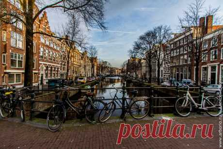 Амстердам, которого мы больше не увидим | Путевые заметки Алексея Онегина