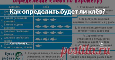 Как определить будет ли клёв? Часто ли вы замечали на рыбалке, что один вид рыбы клюёт лучше, чем другой? С чем это связано и как улучшить свой результат? Именно по этому поводу я подготовил для вас статью. Дело в том, что рыба очень чувствительна к малейшим колебаниям и перепадам давления, что провоцирует её либо на жор, либо на снижение активности. Рыбаку важно уметь определять давление, чтобы понять какую рыбу и на какую пр
