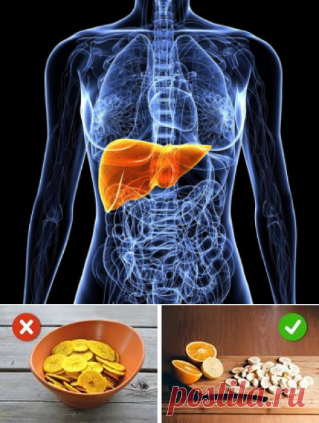 Liver: — do not pass signs of possible problems!