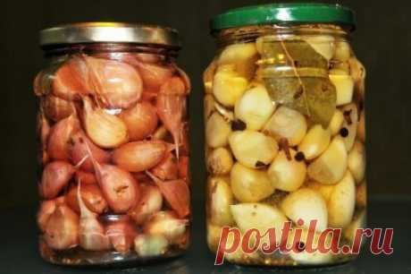 How to pickle garlic for the winter in house conditions. Recipes of marinated cloves and heads of garlic - Onwomen.ru