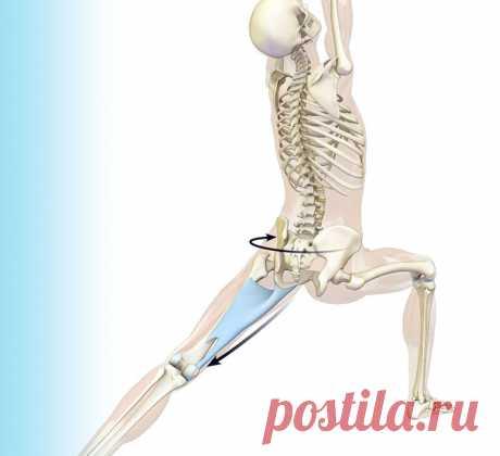 10 упражнений для фасций Научившись влиять на фасцию, можно решить три актуальные женские проблемы — лишние килограммы, первые морщины и хрупкие суставы.
