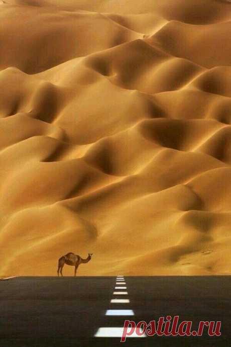 Так это ж Camel, его курить надо.