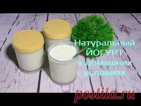 NATURAL Yoghurt the hands in HOUSE CONDITIONS \/ How to make yogurt - YouTube