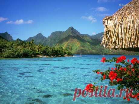 Есть на нашей планете земной рай и находится он в районе Французской Полинезии и имя ему Бора Бора. Приятного всем пробуждения.