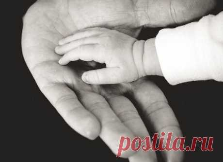 Почему воспитание кнутом приводит к утрате родительского авторитета / Малютка