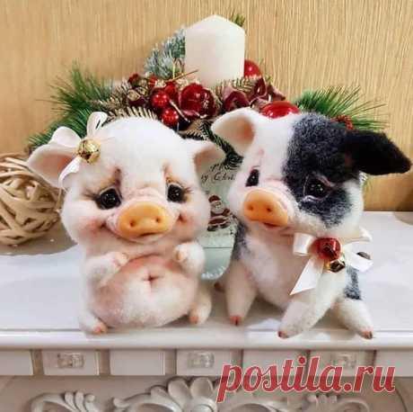 Տարվա գեղեցիկ զույգը․․🐷❤️․ Շնորհավոր Հին Նոր տարի ...❤️🎄🍷 Թող Նոր Տարվա մեջ մենք ունենանք այն, ինչ չի կարելի գնել։ Սեր, Առողջություն, Երջանկություն և Ընկերներ!  Թող Ձեր երջանկությունը լինի իրական, տունը- տաք, իսկ սերը - փոխադարձ! 🎅🎄💕⛄🎉