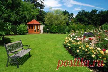 47 приемов для малоуходного сада от ландшафтного дизайнера | Идеи дизайна (Огород.ru)